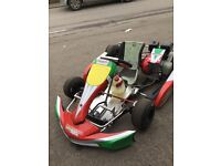2013 project one Cadet Kart