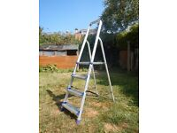Excellent Quality Werner Ladder