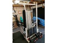 Commercial gym tricep & biceps 240kg weights cable machine