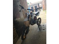 140cc 4stroke Lifan pitbike WHITE AND GOLD