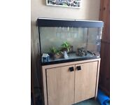 FLUVAL ROMA 125 tank and cabinet for sale