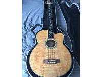Michael Kelly Dragonfly 4 Fretless Acoustic Bass with Deluxe Hardshell Case