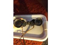Greenkat vintage 10x50 binoculars