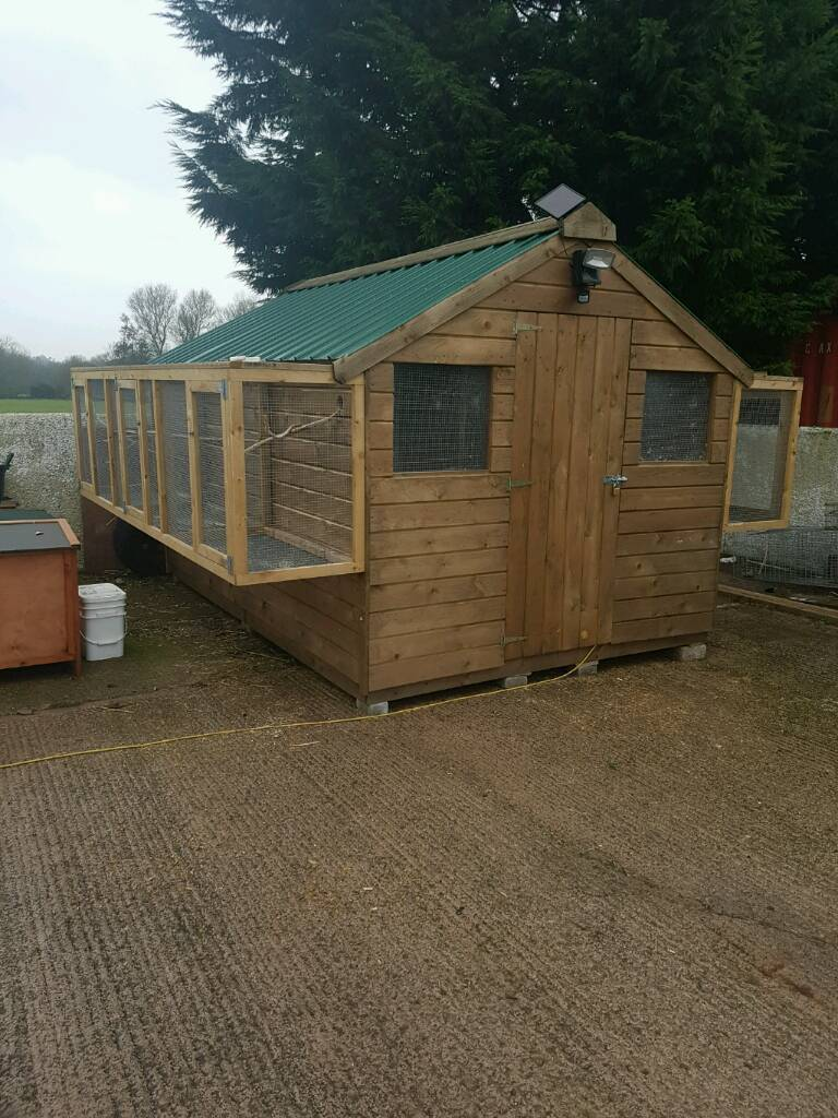 12x8 shed 6 months old in dungannon county tyrone for 12x8 shed with side door