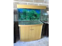 190l nice fish tank 3 ft long with only light lid stand all clean u can look pic