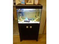 fish tank and cupboard and fish comes with brand new heater filter and built in light and xtras