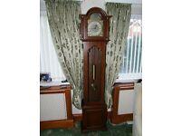 Tepus Fugit Mechanical Grandfather Clock
