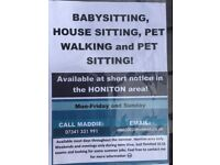 Babysitter, house sitter, pet sitter and dog walking