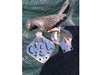 1 RAC badge and 1 AA badge, plus 1 metal bird bonnet mascot
