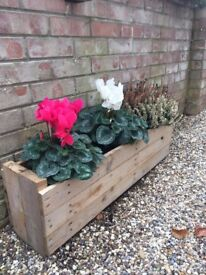 Bespoke Flower boxes