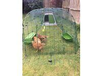 Omlet Eglu Go - Chicken Coop - 2m run - plus accessories - £330