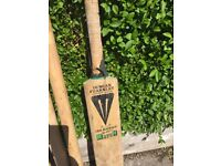 Adult cricket set