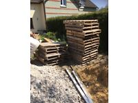 Lots of pallets available