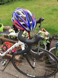 Schwinn fastback road race cycle.