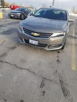 Ride to brampton or brampton to barrie 20$ only