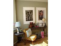 Sleek & Elegant French Provence Antique Style Console Table