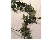 Artificial ivy - 6 x 1.7m