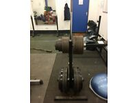 Olympic Plates Weights Discs Commercial Fitness Gym Equipment Barbell EZ Curl Bar