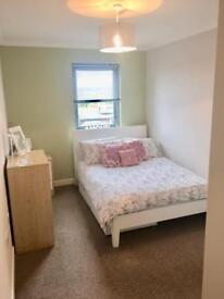 Professional Double Room to rent (all bills included)