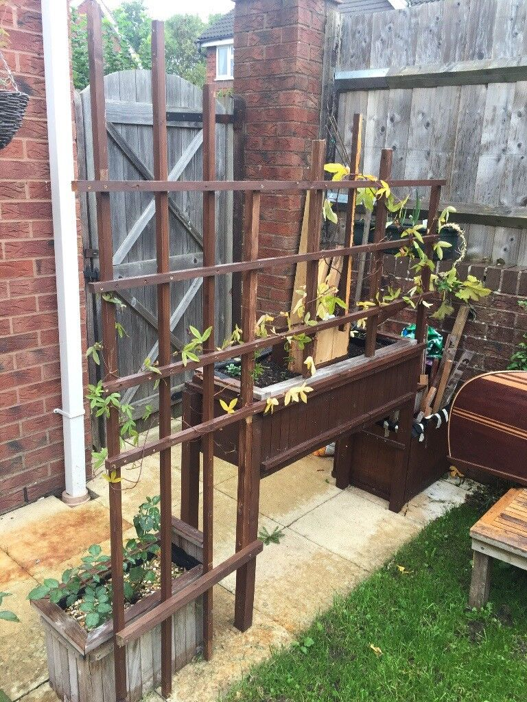 4 Teak benches and low coffee table, Assorted planters with plants