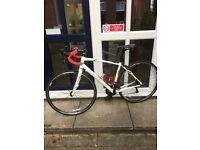 Spezialized race bike size 54