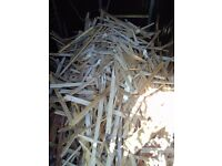 Shed full of laths, ideal for kindling
