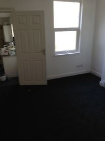 2 Newly Renovated flats to let