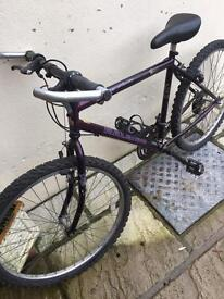 Used Raleigh 26 inch wheel