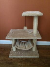 Cat activity / scratch post