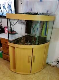 190 litre fishtank