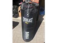 Everlast Professional Punching Bag