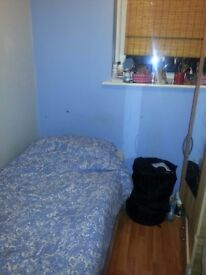 Boxed single room to rent
