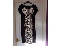 Ladies size 14 black and cream dress bnwt
