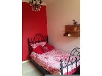 Comfortable single room to rent in 3-bed house in Caversham