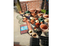 Selection of Plant Pots