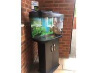 Interpet Fish Pod Aquarium - 64L