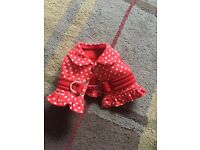 Puppy Or Dog Coat/harness