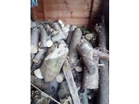 logs /firewood-shed full of seasoned mixed wood cut logs and you can have to shed if you want it too