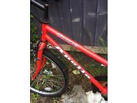 Apollo corona bike