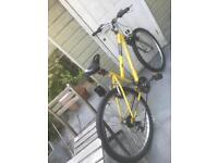 Medium sized women's mountain bike