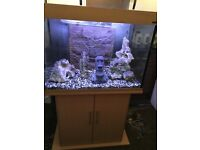 Tropical Fish Tank Aquarium With Stand (Complete Set Up) 200 Litre