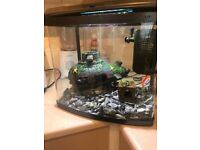 Fish tank and accesories