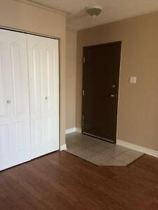 Charming 1 bedroom apt for rent -Rockland