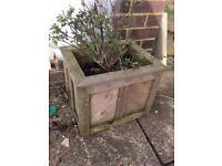 Garden pots planters wooden