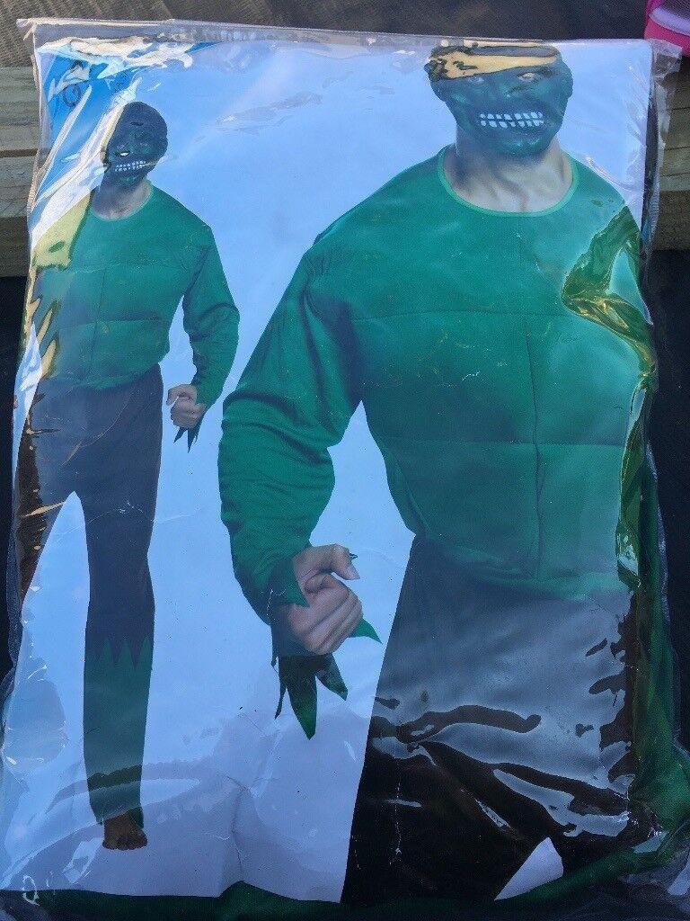 Men's large hulk fancy dress