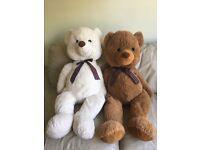 Large teddy bears set