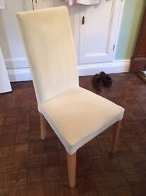 6 dining chairs in cream velour