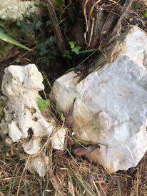 Ocean rock, corals and decorative stones