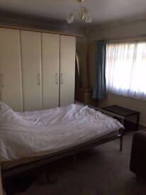 one double room in neasden to rent