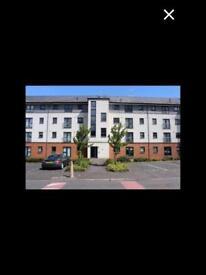 2 BEDROOM GROUND FLOOR FLAT: £575 pcm Kincaid Court, Greenock